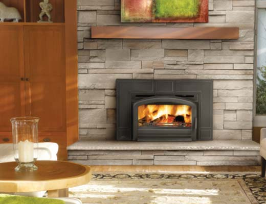 Fireplace inserts fireplaces fireside modern design for Modern wood burning insert
